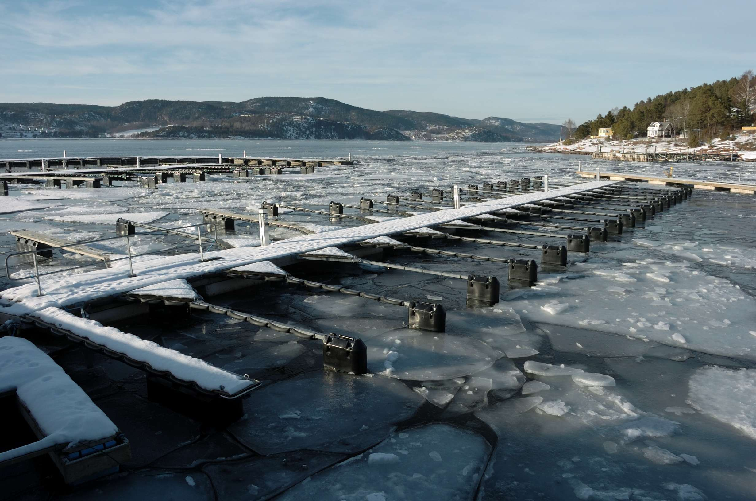Rdtangen marina vinter 03 - LAV