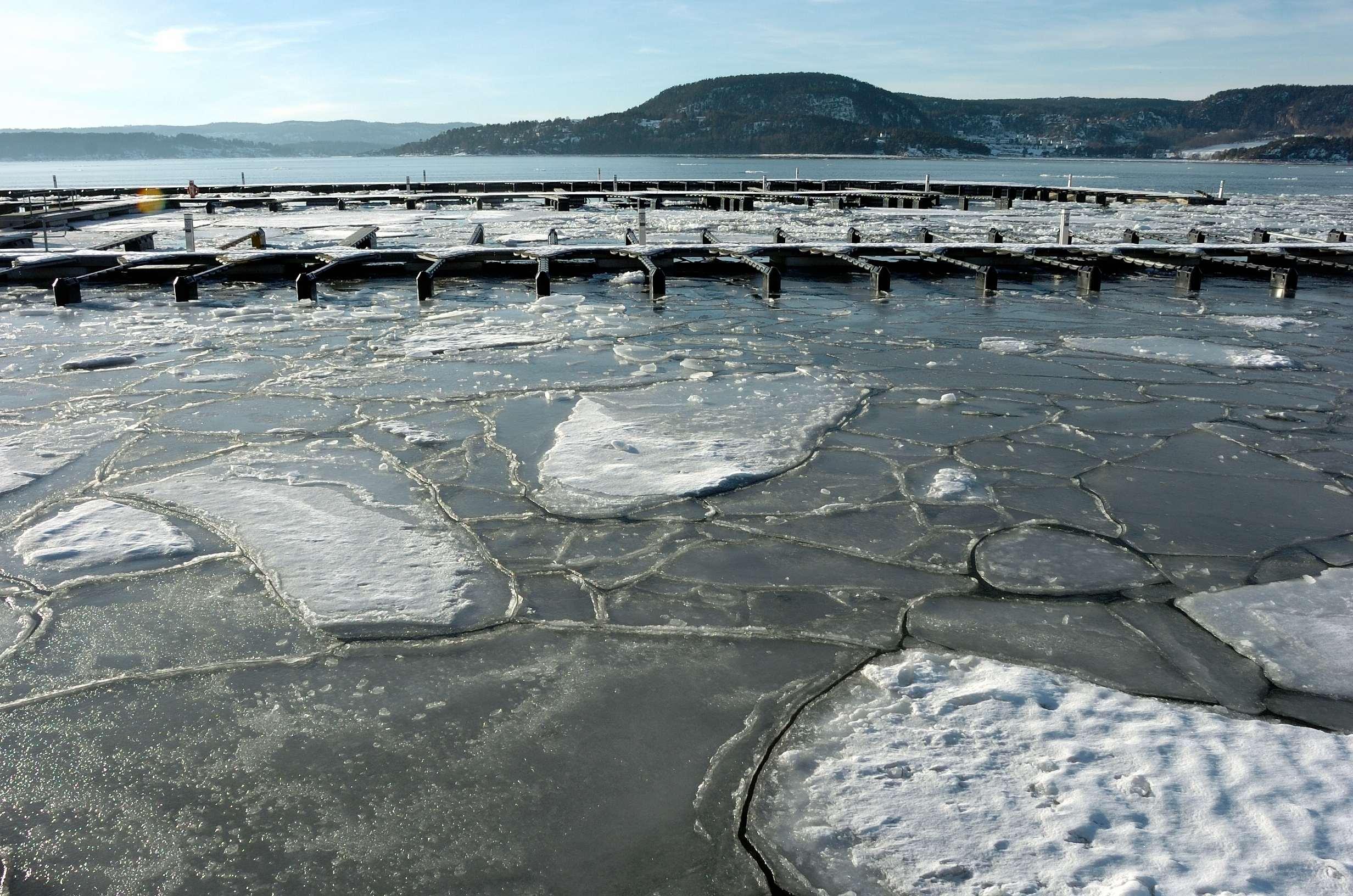 Rdtangen marina vinter 04 - LAV