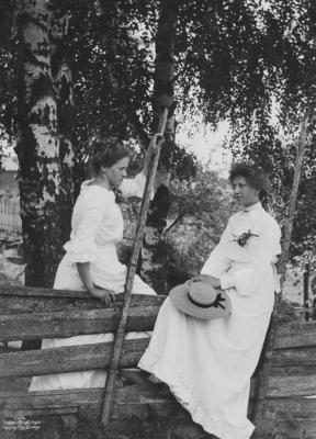 Wilse: To piker ved Gjerdet Sommeridyl 3/7 1904