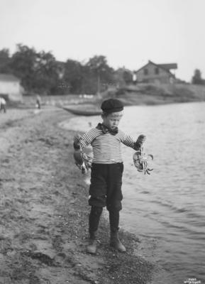 Wilse: Gut med Krabber 25/7 1904