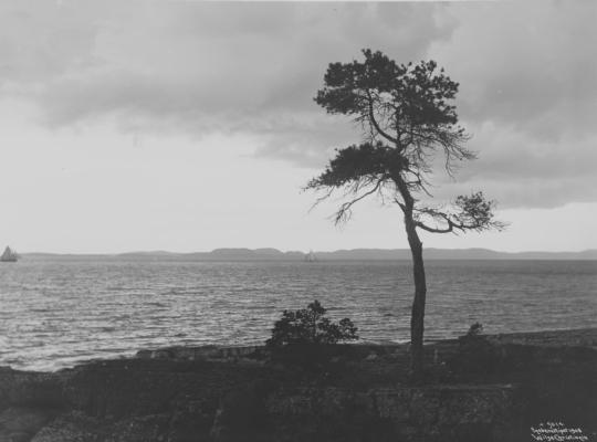 Wilse: Strandparti Stemning Rødtangen 5/8 1908